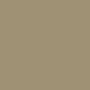 HBZ coin
