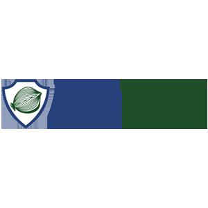 DeepOnion